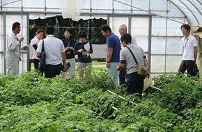 トマト栽培連携事業連絡会議の写真